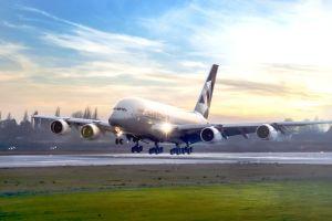 Etihad Airways: mehr Passagiere und höhere Pünktlichkeit
