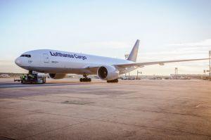 Frachter der Lufthansa Cargo: noch öfter nach Japan