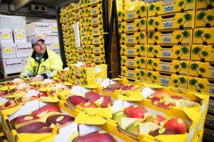 Lufthansa Cargo mit Fresh/td auf der Fruit Logistica