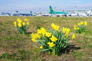 Reisewelle bis Oktober: Tipps fürs Fliegen ab Fraport