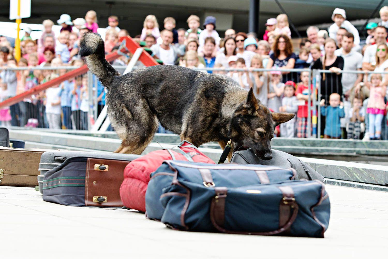 Kinderfest Flughafen Stuttgart 2020 Veranstaltungen