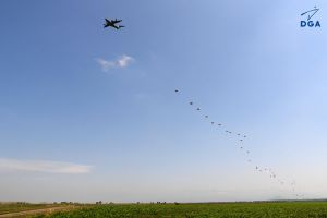 Airbus A400M setzt Fallschirmjäger ab