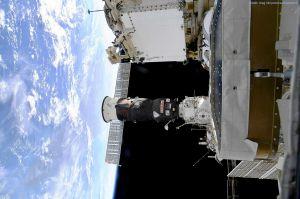 ICARUS: ISS lauscht Flugdaten von Zugvögeln