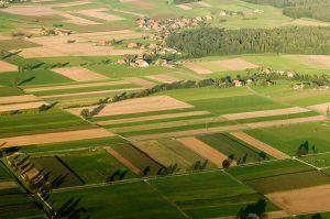 Eurowings: Sonderflüge für Erntehelfer nach Deutschland
