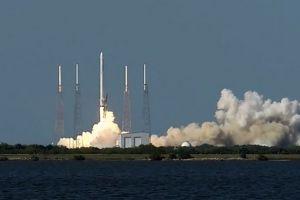 SpaceX bringt Gefäßzellen aus Magdeburg zur Raumstation